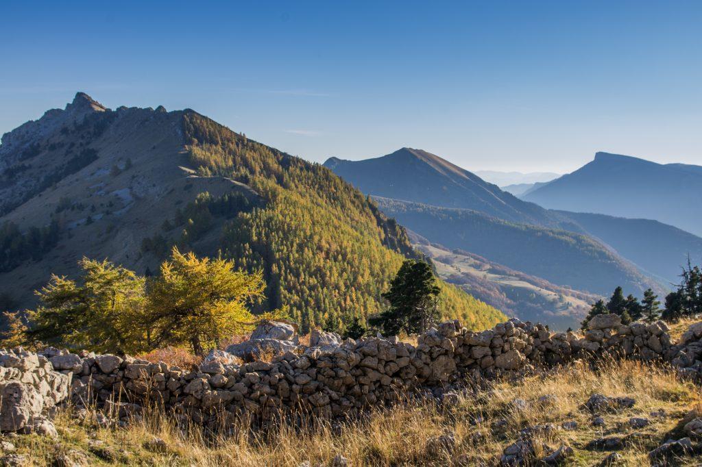 MORDEFROID Xavier : Accompagnateur en montagne, éducateur à l'environnement, photographe