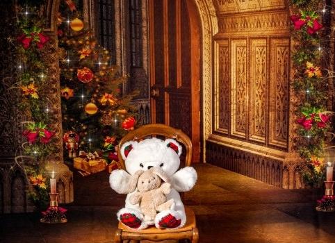 Séance photo spécial Noël