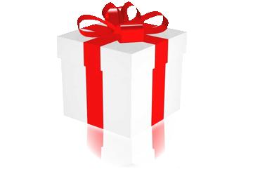 Agnès propose des bons cadeaux pour Noël